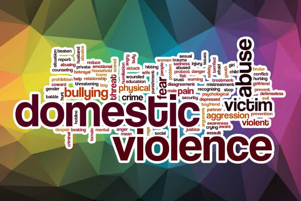 Domestic Violence and Sexual Assault Services_1 in 4 Mental health
